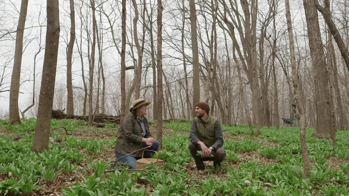 Two people squat in the woods, with a woven basket in front of one of them.