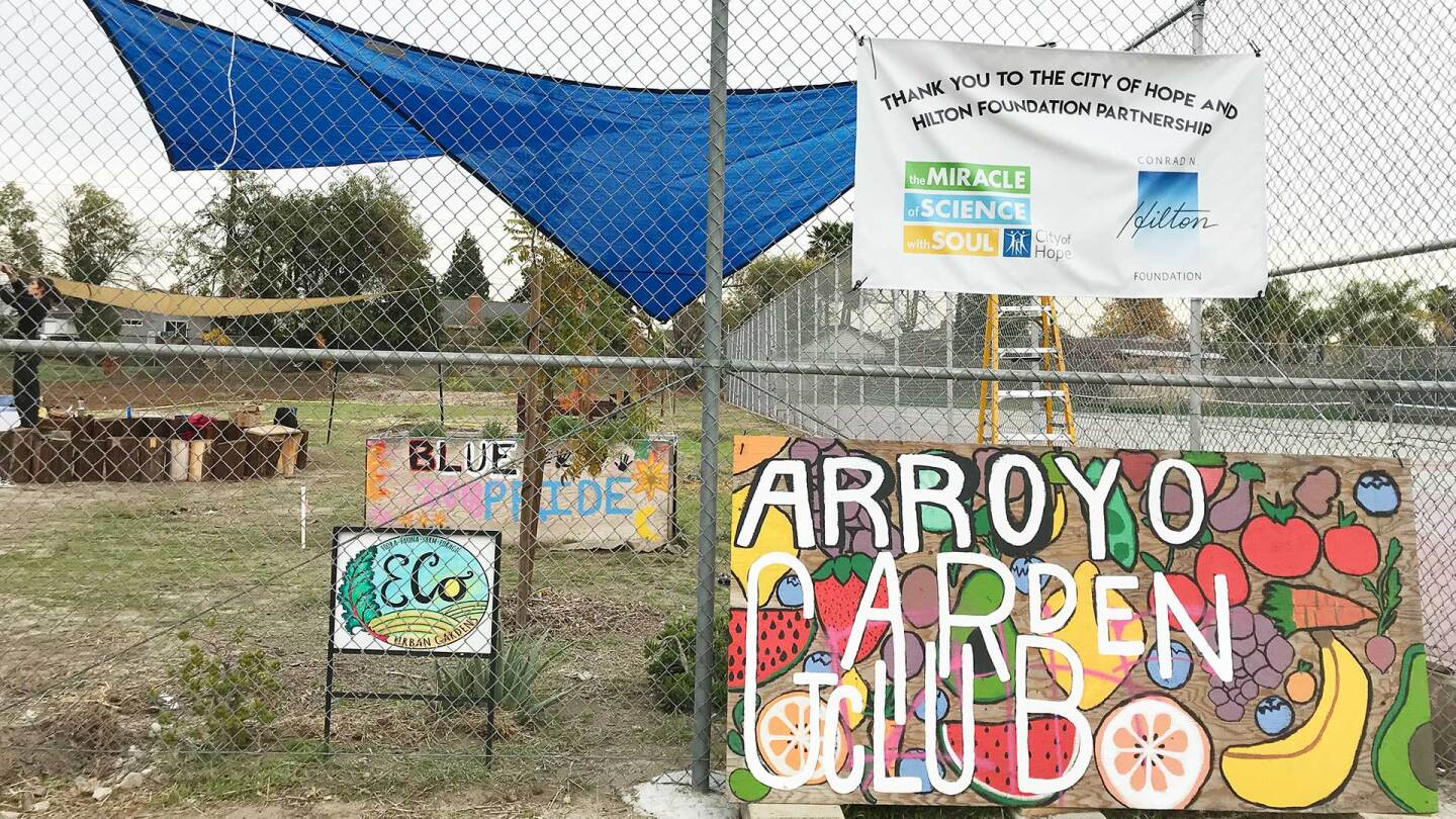 Decorations on the edge of Arroyo High School's community garden | Marianne Zaugg
