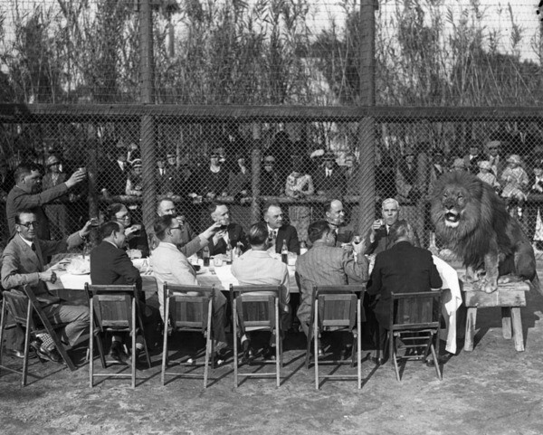 Men give a toast to a lion sitting at the end of their table | Photo: Security Pacific National Bank Collection, Los Angeles Public Library