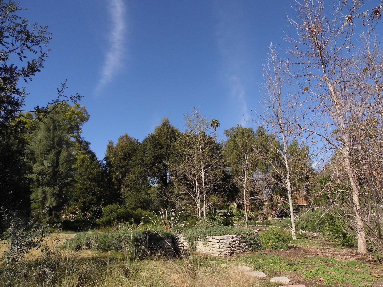 The grounds in Arlington Garden   Sandi Hemmerlein