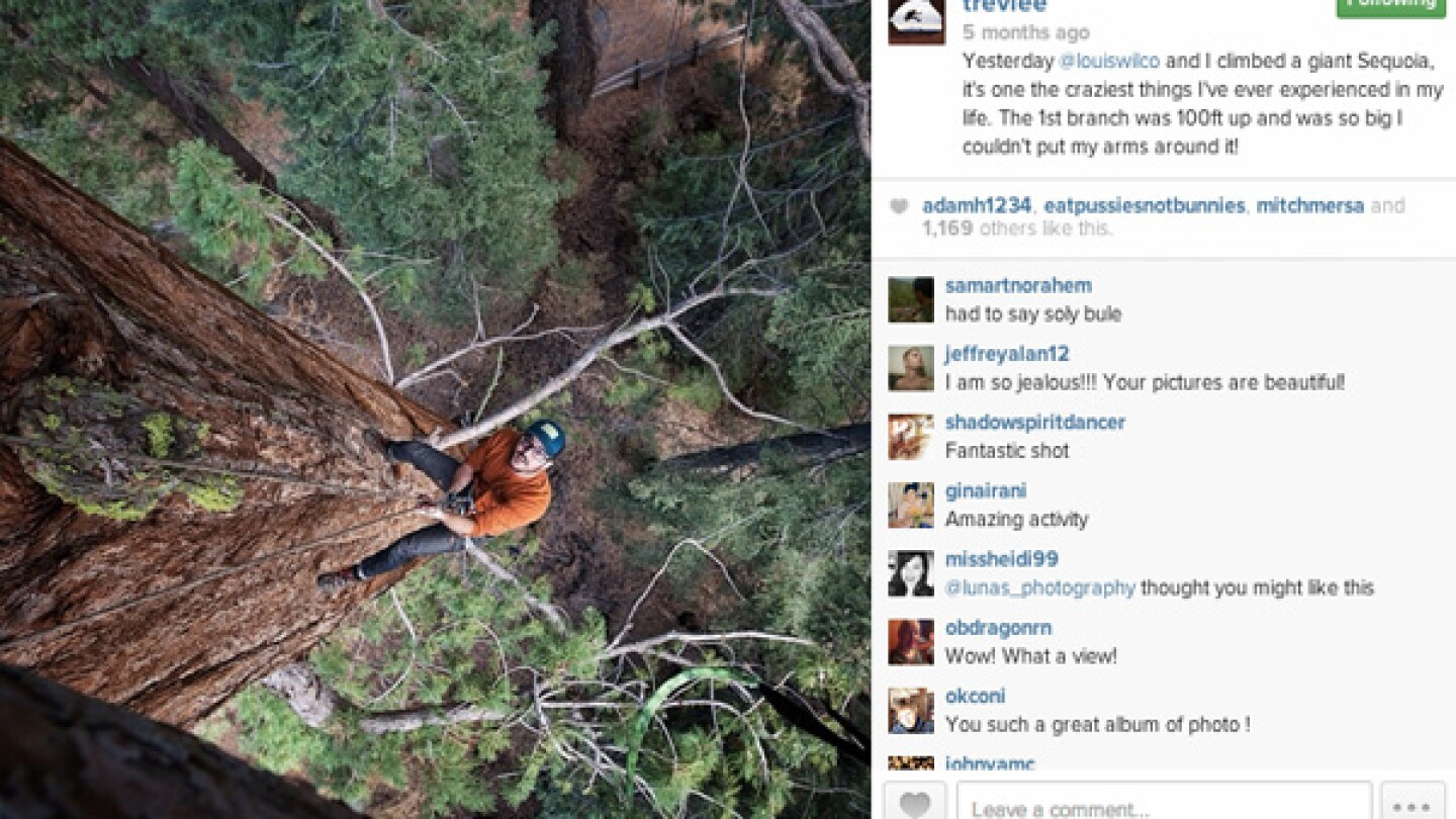 Trev Lee climbs a Giant Sequoia in Tuolumne Grove, Yosemite National Park.