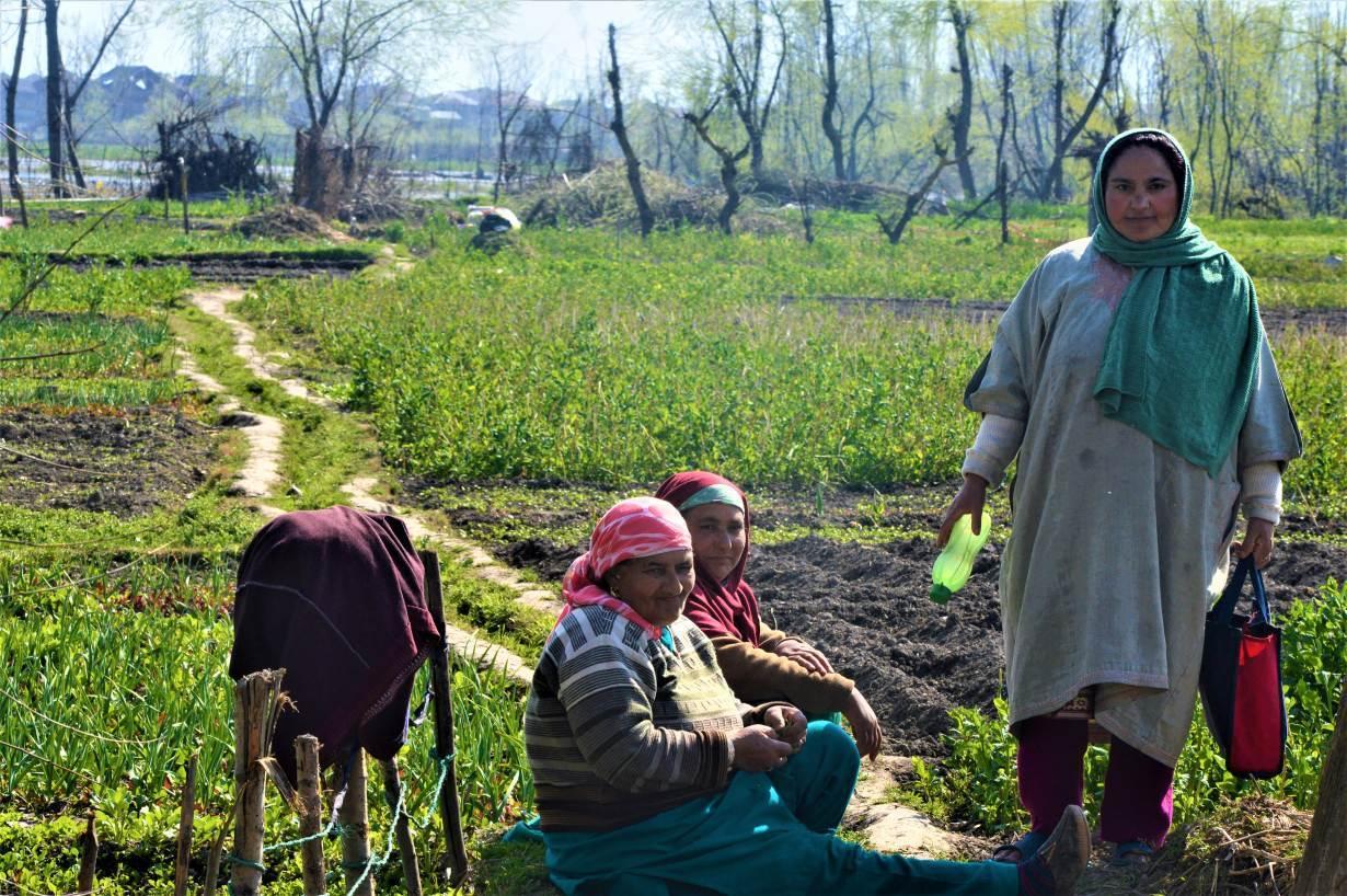 Kashmiri women work at their farm in Zunimura, near Srinagar, India, March 17, 2020. | Thomson Reuters Foundation/Athar Parvaiz