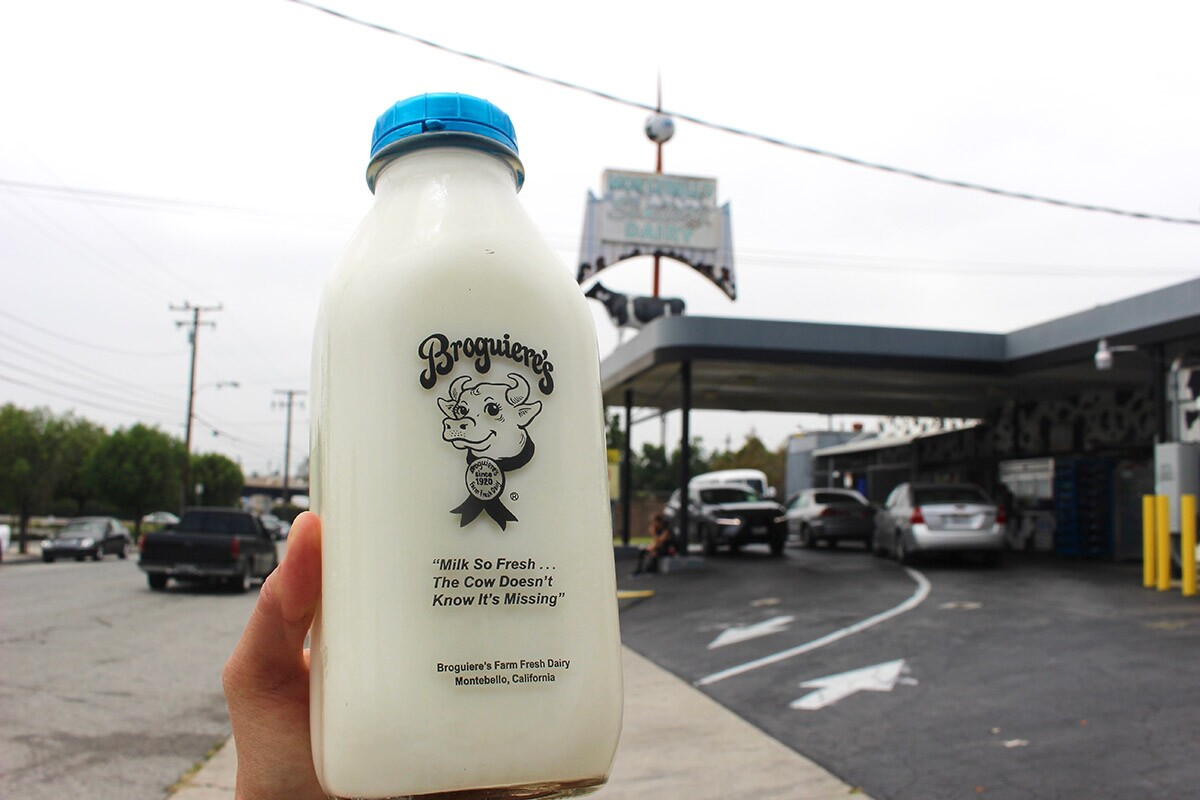 """The famous """"Milk So Fresh ... The Cow Doesn't Know it's Missing"""" slogan 