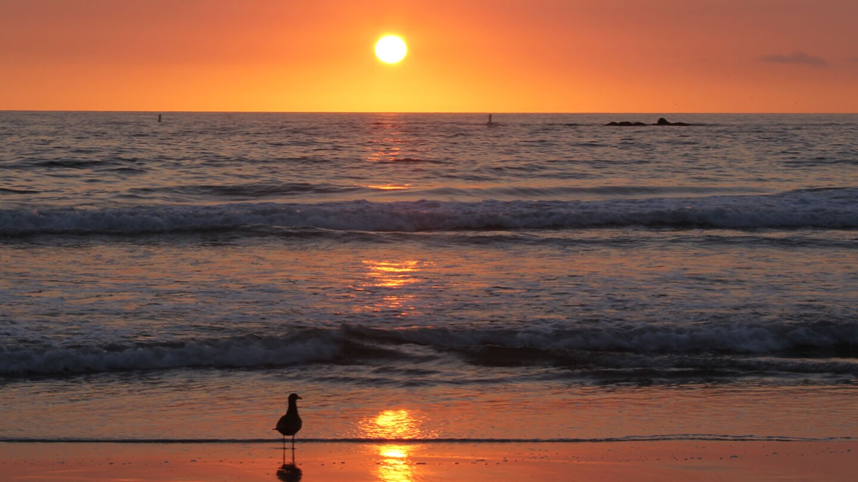 Illuminating Sunbeams in Santa Monica, California | Lynne Gilbert for Getty Images