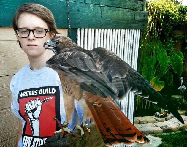 birdfest01.jpg
