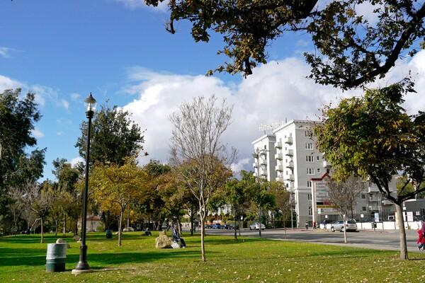 View of the Ansonia Apartments from MacArthur Park | Photo by Yosuke Kitazawa