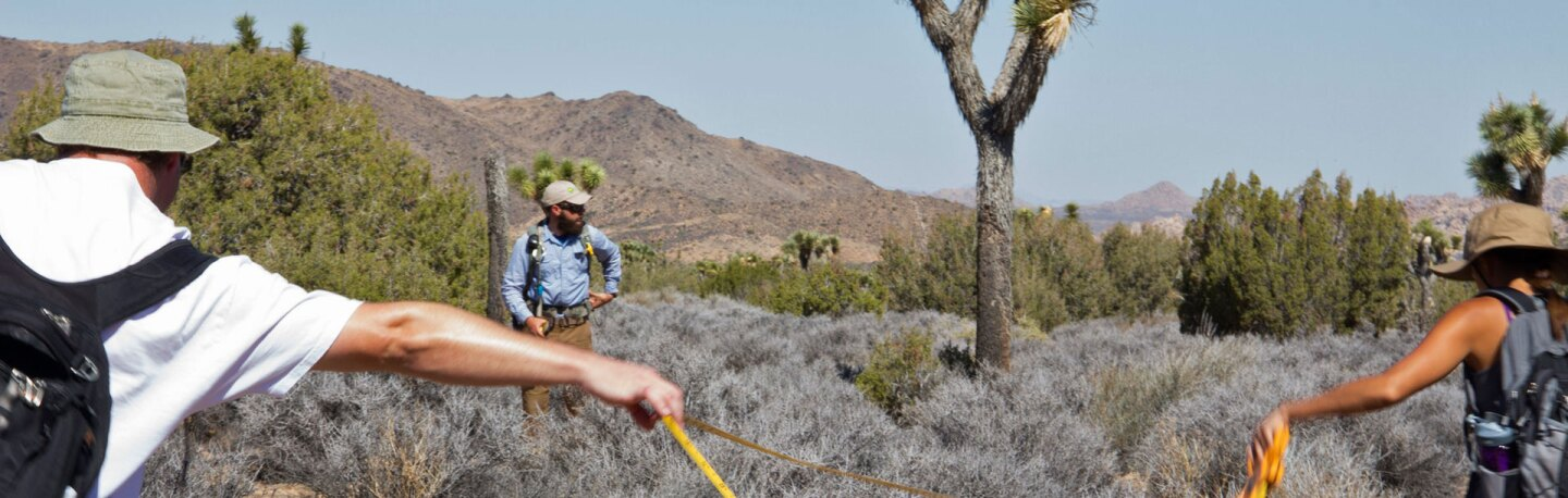 Climate change vegetation monitoring by JTNP