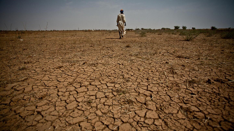 Climate Change Soil