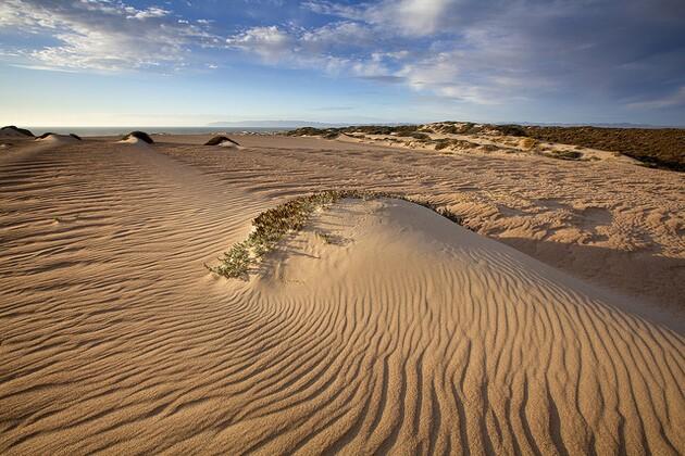 guadalupe-dunes-5-21-15-thumb-630x420-92901