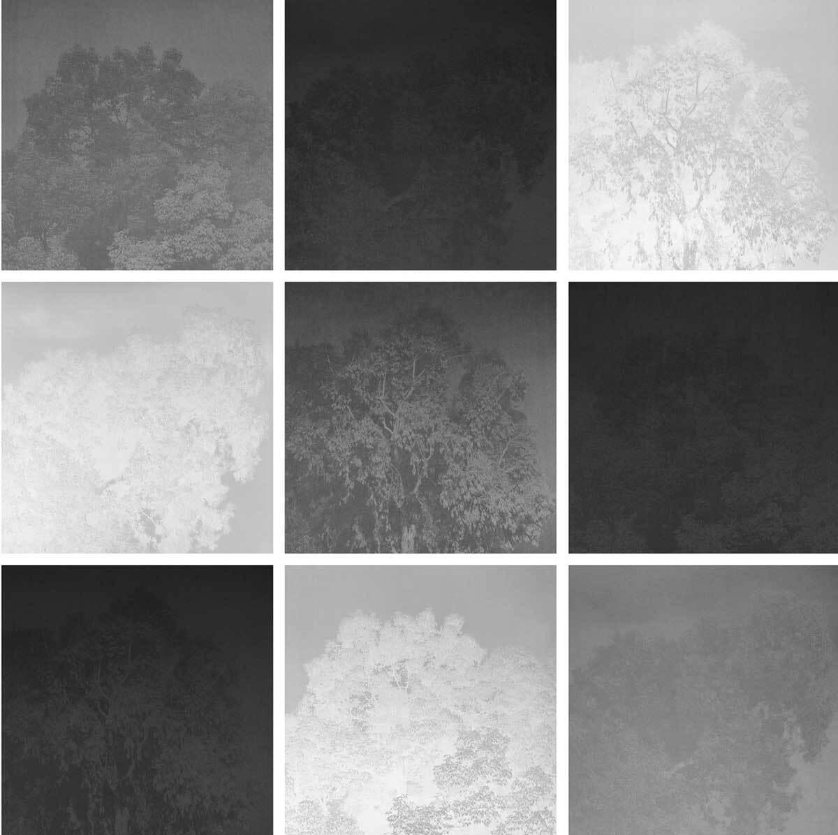"Anita Bunn, ""Untitled Iteration (Grid 2),"" 2015   Courtesy of El Nopal Press"