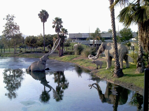La Brea Tar Pits next door to Los Angeles County Museum of Art. Image courtesy of Tyler Stallings.
