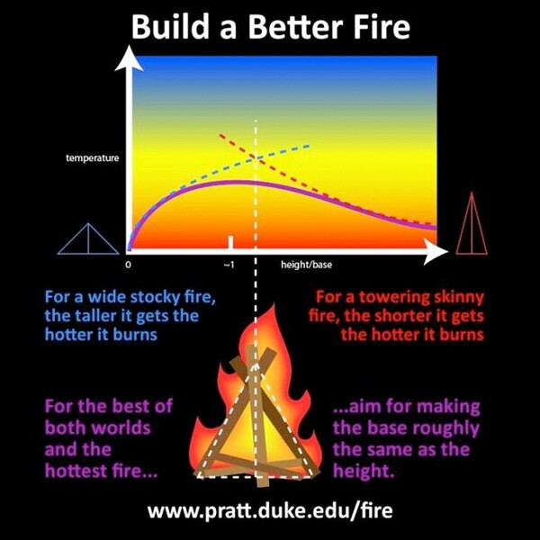 "Illustration by <a href=""http://www.eurekalert.org/multimedia/pub/92948.php"">Duke University</a>"