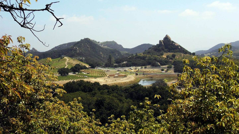Malibu Wine Hikes take visitors through the Semler family's Saddlerock Ranch vineyards | Sandi Hemmerlein