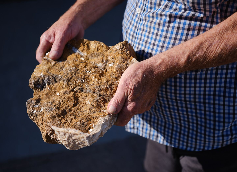Gail Austin holds limestone specimen.   Osceola Refetoff