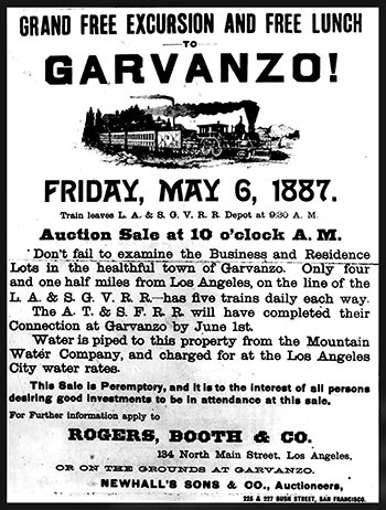 Garvanzo Sale