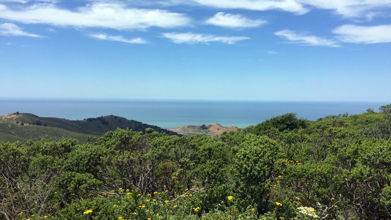 Pacific Ocean from Sweeney Ridge