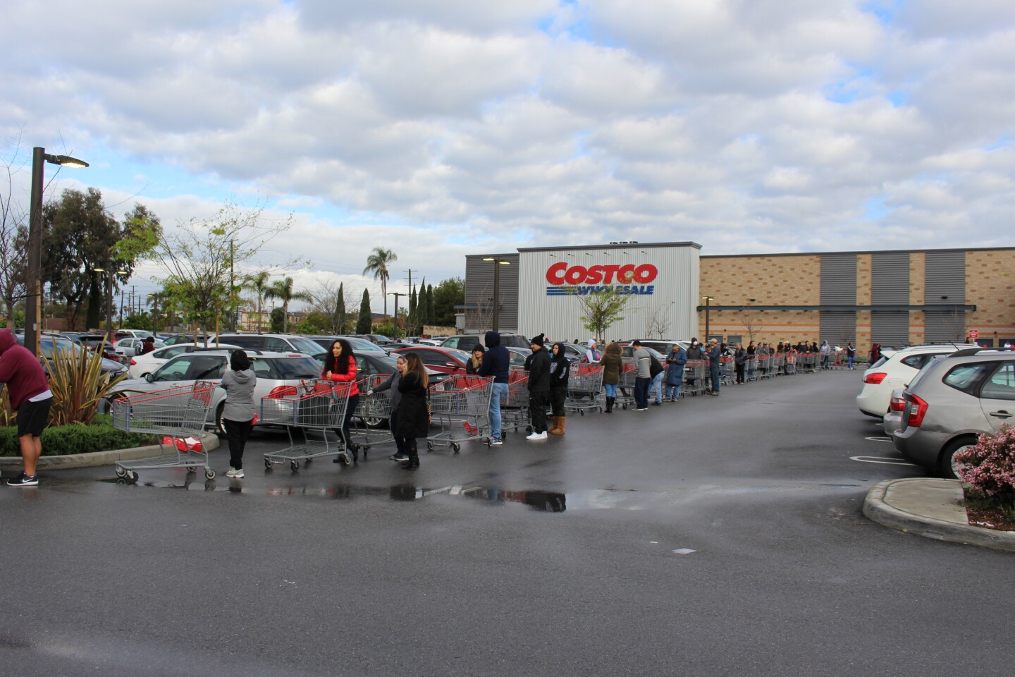 Line of shoppers in the parking lot outside of Costco in Marina Del Ray on March 15th, 2020
