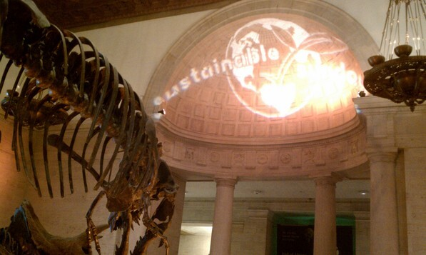 Sustainable Sundays at the Natural History Museum