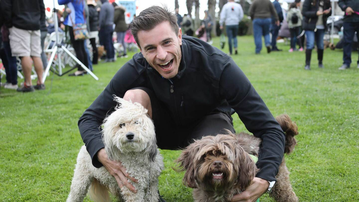Man poses with his two long-haired dogs at Bulldog Beauty Contest