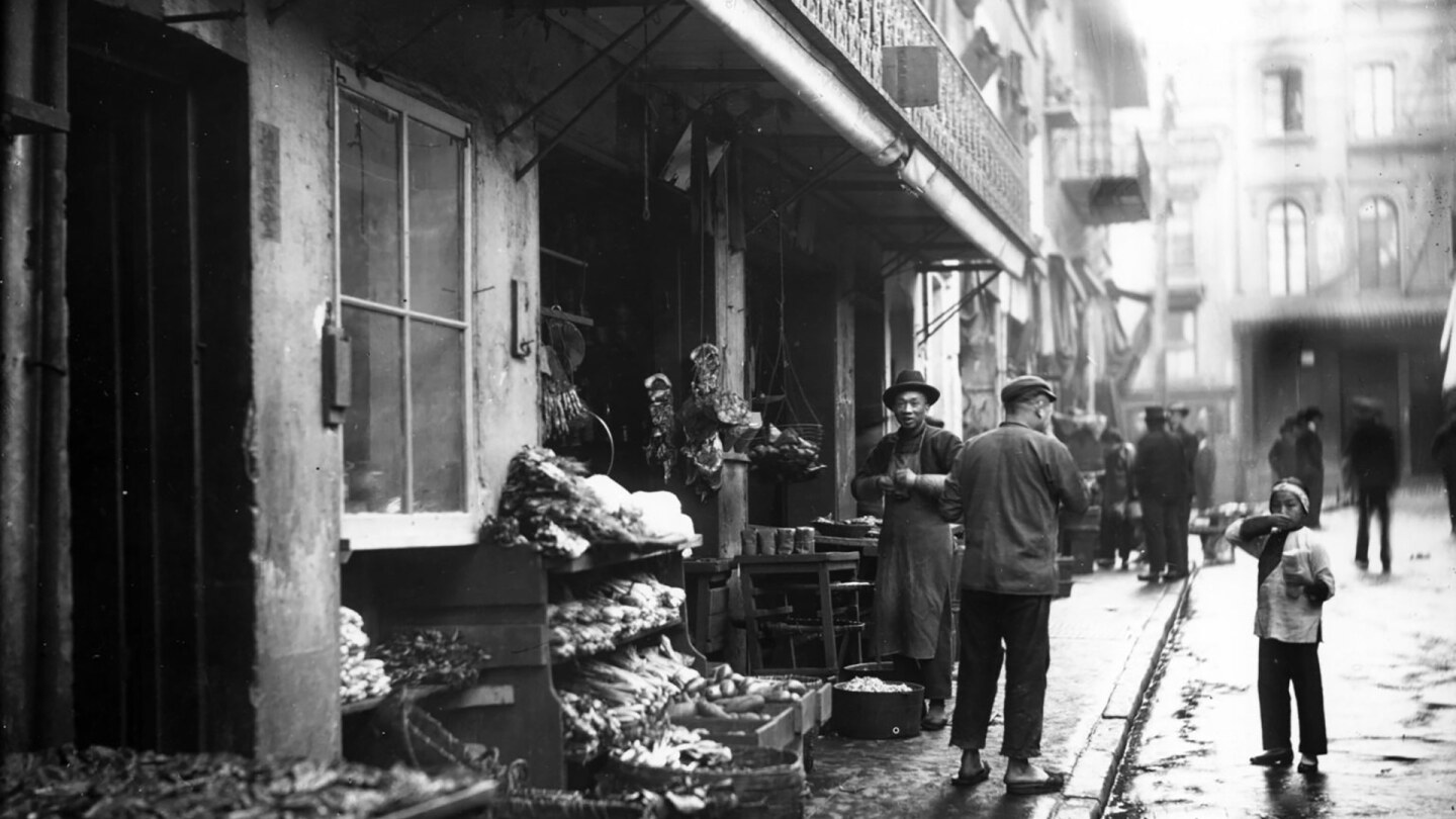Storefront of Chinatown meat and vegetable market, San Francisco, California, 1895   University of Washington, Special Collections, Hester 11128