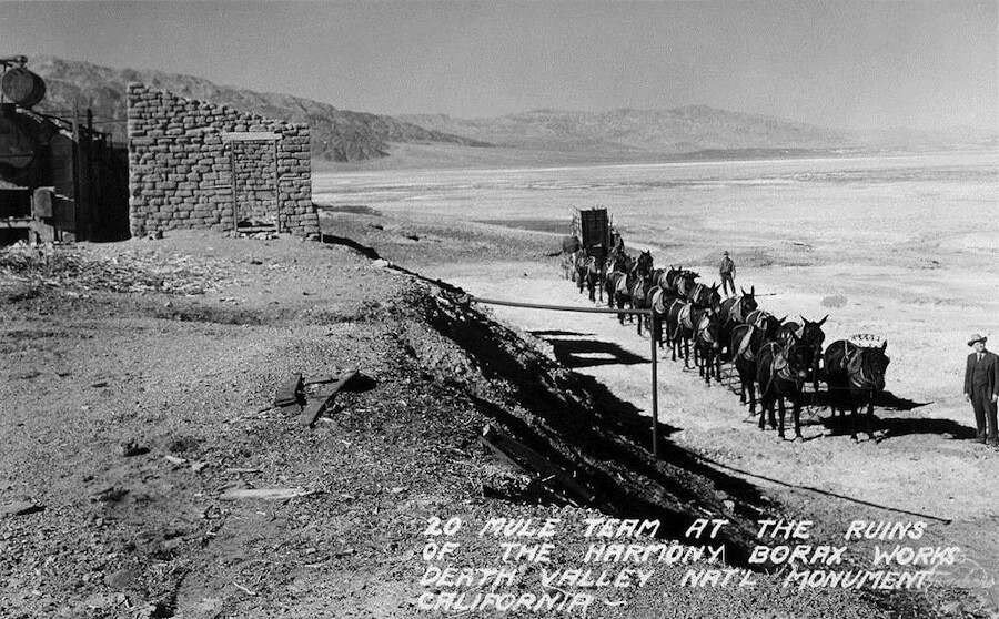 A twenty mule team at the ruins of the Harmony Borax Works, Death Valley, CA.