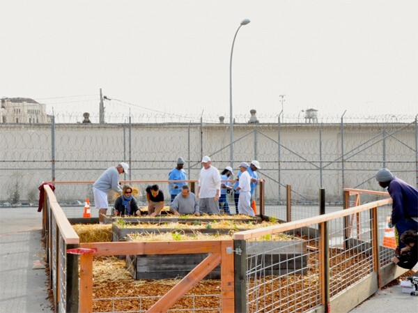 """Photo by <a href=""""http://blog.plantingjustice.org/a-peoples-history-with-the-insight-garden-program-at-san-quentin-state-prison-by-haleh-zandi/"""">Insight Garden Program</a>"""
