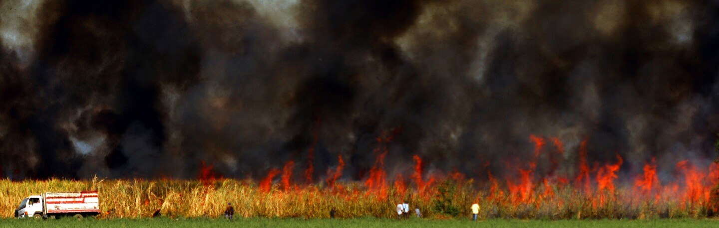 A controlled burn prepares a sugarcane field for the harvest in El Salvador. | Photo: MARVIN RECINOS/AFP/Getty Images