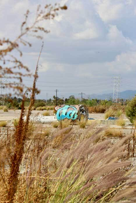 Infrastructure left behind by the railroad takes on biomorphic form. | Courtney Cecale