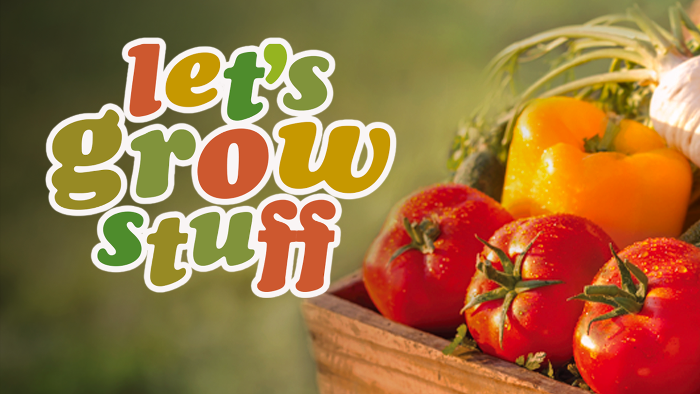 "Key Art for ""Let's Grow Stuff"" featuring a box of fresh tomatoes and bell pepper."