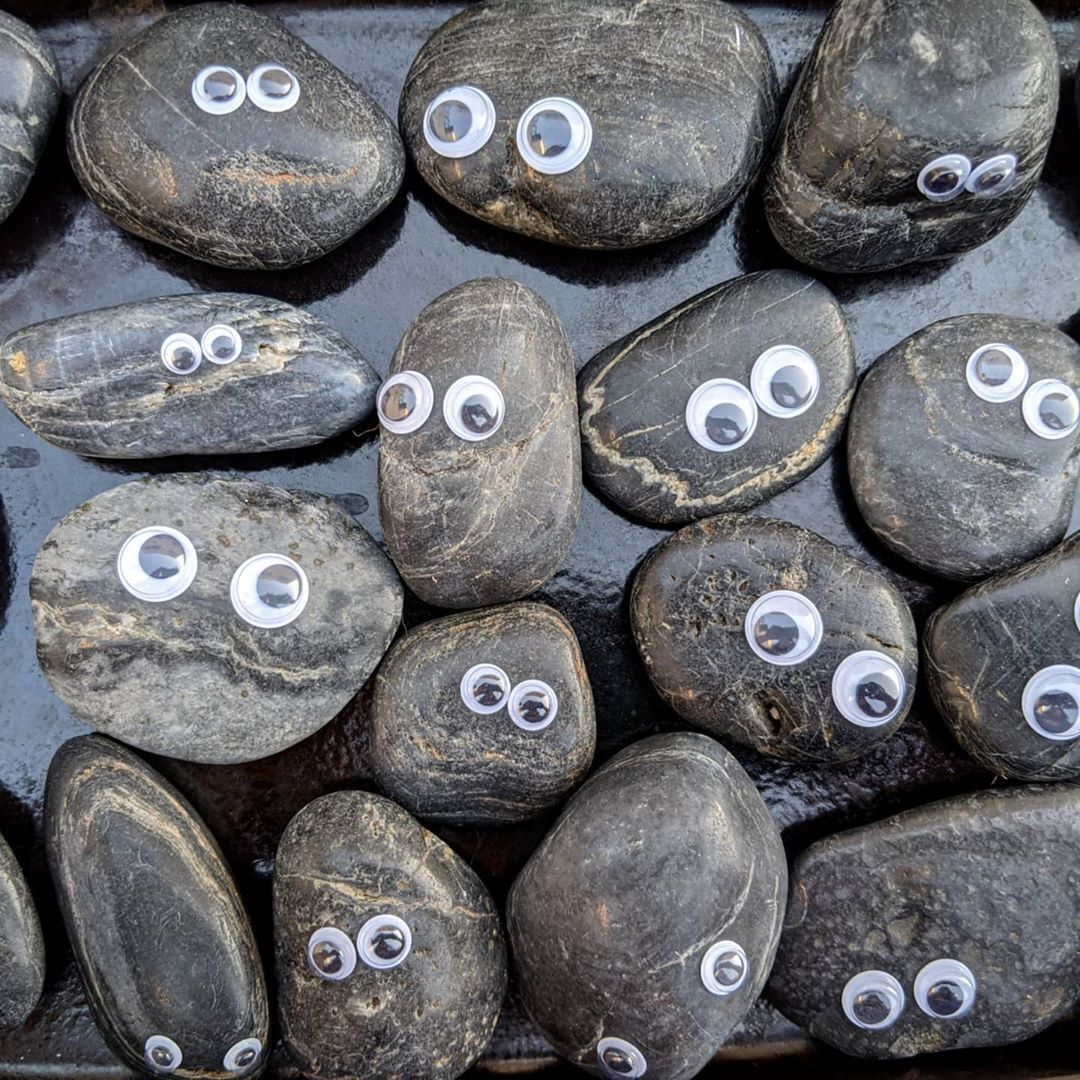 A group of Dwayne rocks from the Tiny Museum | Courtesy of Tiny Museum