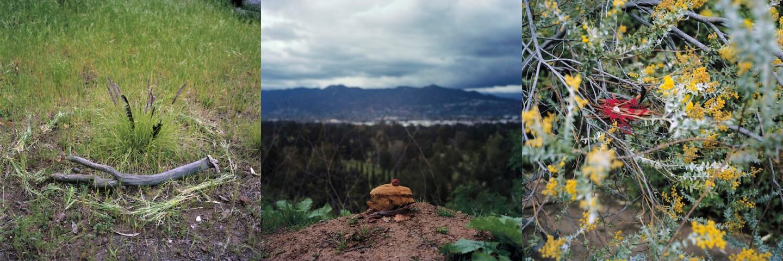 "Mercedes Dorame, ""Origin Stories"" photo series"