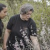 """Julie Cordero-Lamb leads a plant walk in Santa Barbara. 