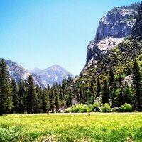 Zumwalt Meadow. Photos by Farley Elliott.