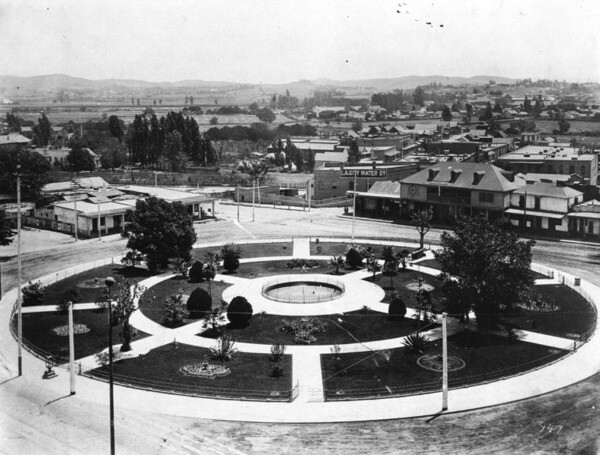 The four Moreton Bay figs around the historic Los Angeles Plaza (two appear pruned here) were the first of their kind in Southern California. Courtesy of the Photo Collection, Los Angeles Public Library.