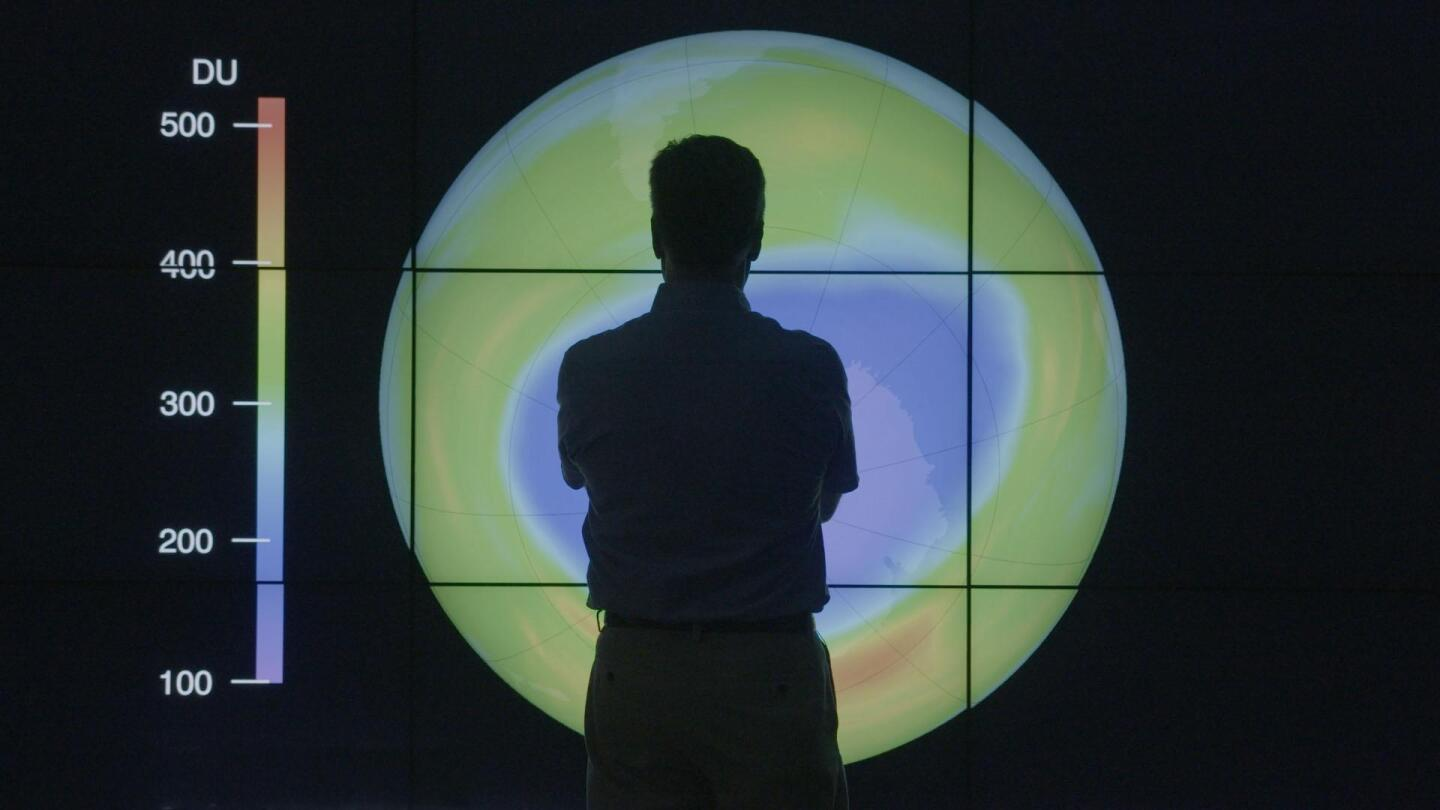 Silhouette of a person examining a kind of climate map.