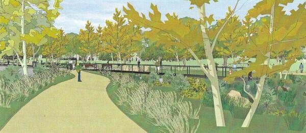 Wetland/Riverine Habitat & Boardwalk