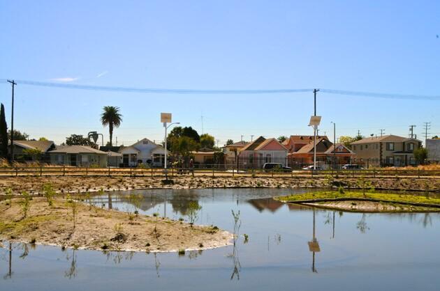 wetlands-top