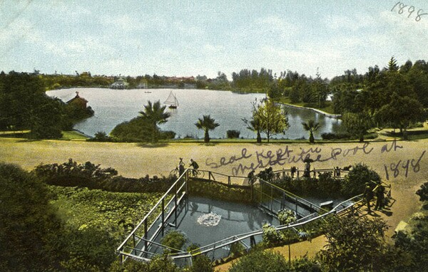 A seal pool was a popular attraction in the park's early years. Courtesy of the Photo Collection, Los Angeles Public Library.