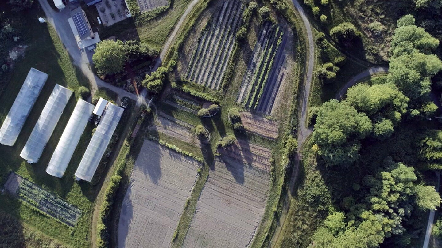 "Aerial shot of Potawot Community Garden. | Still from ""Tending Nature"""