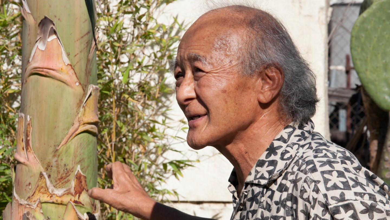 Kenzi Shiokava in his studio garden by Kenya Davis-Hayes
