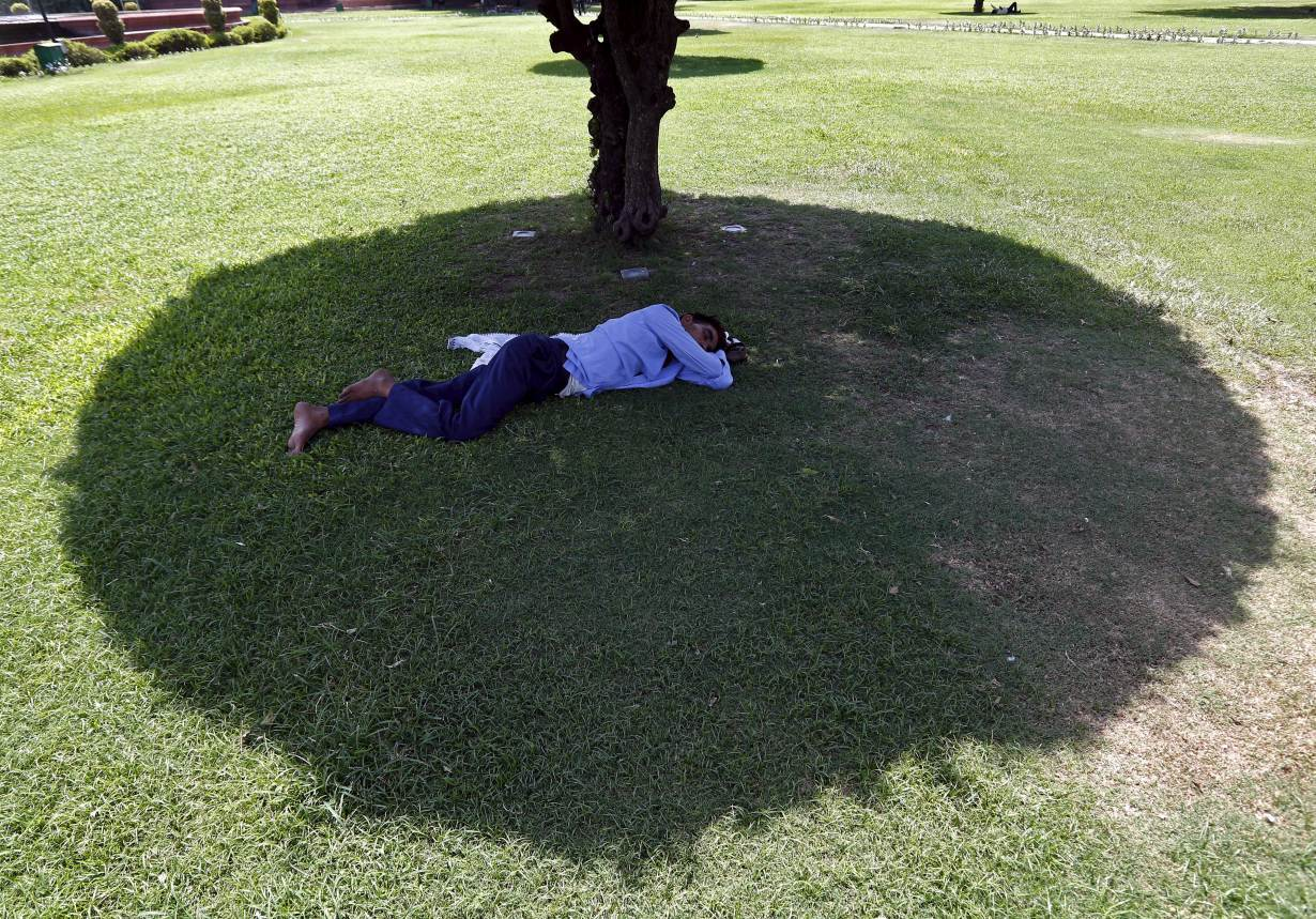 ARCHIVE PHOTO: A man sleeps under the shade of a tree on a hot summer day at a public park in New Delhi, India, May 27, 2015. | REUTERS/Anindito Mukherjee