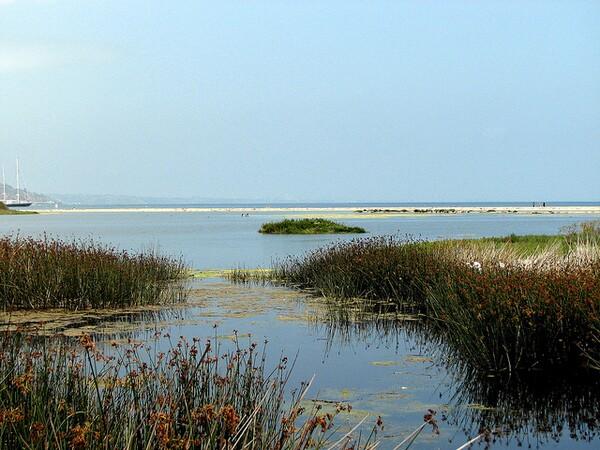 malibu-lagoon-5-28-14-thumb-600x450-74730