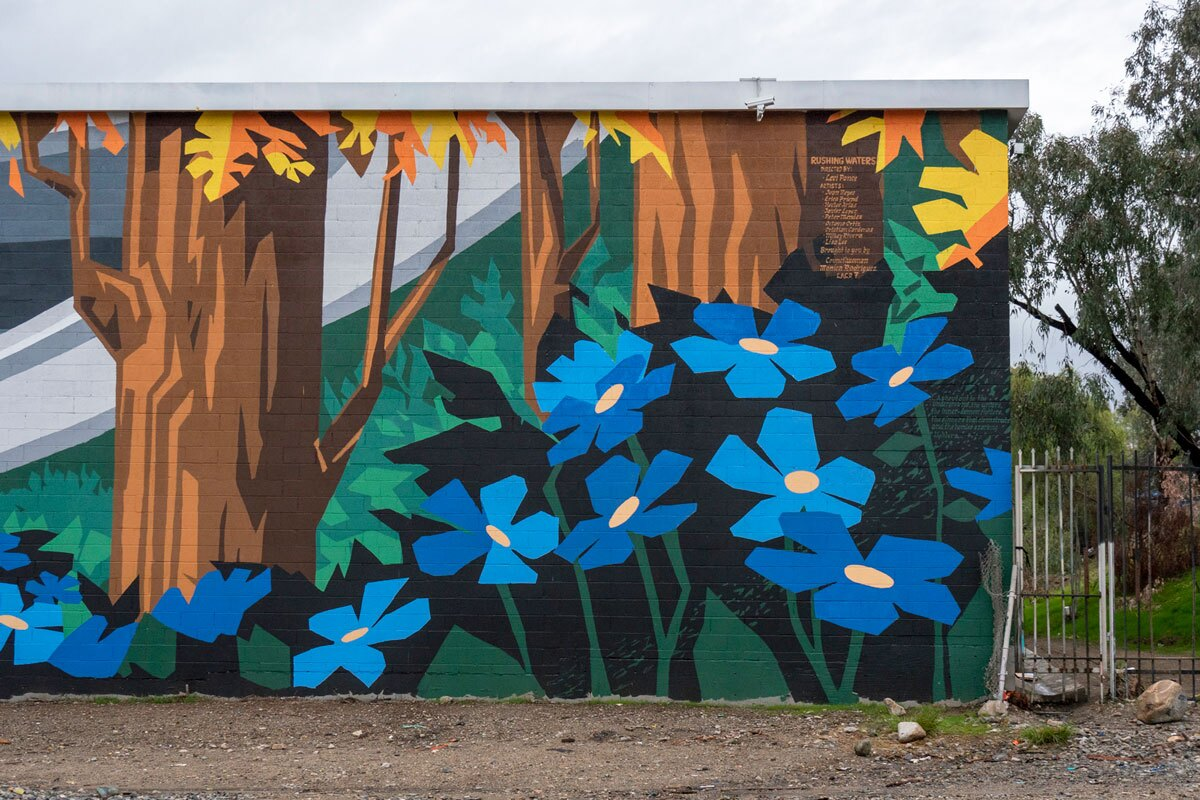"""Rushing Waters"" mural in Pacoima. The image shows large blue forget-me-nots. 