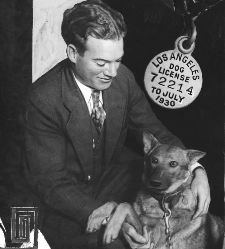 Police dog arrested during Prohibition | Herald Examiner Collection of the Los Angeles Public Library