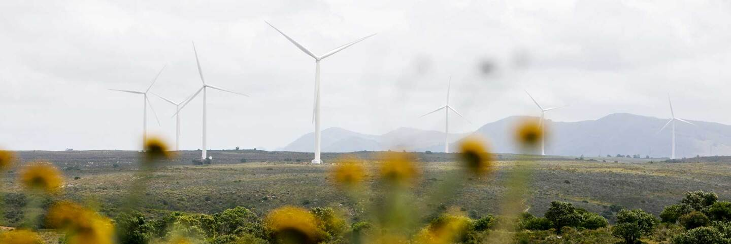 Wind turbines in South Africa. | Courtesy of of Thomson Reuters Foundation