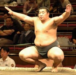 Byamba-pro-sumo-thumb-250x249-26215
