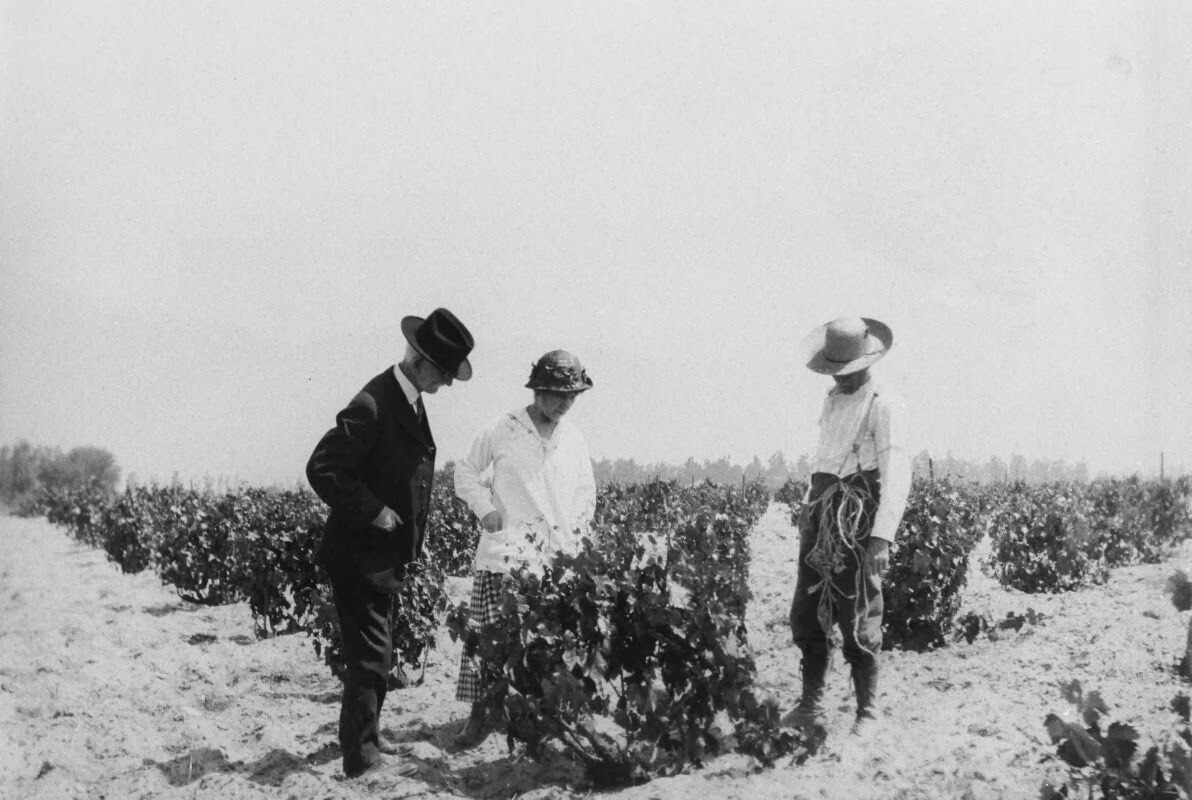 Cucamonga Winery in 1909