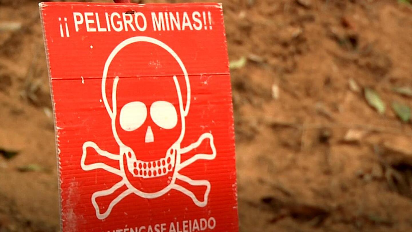Clearing Colombia's Landmines: The Ex-Combatant