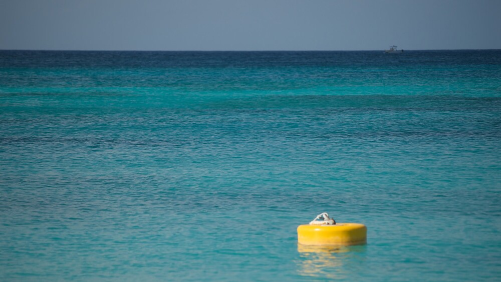 A typical mooring buoy in the Caymans | Photo: Pete Markham, some rights reserved