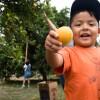 Boy with Orange, Food Forward